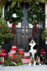 Front door, inviting festive season